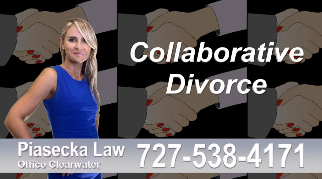Divorce Lawyer Clearwater Florida Collaborative, Divorce, Attorney, Agnieszka, Piasecka, Prawnik, Rozwodowy, Rozwód, Adwokat, Najlepszy, Best, divorce, attorney, lawyer