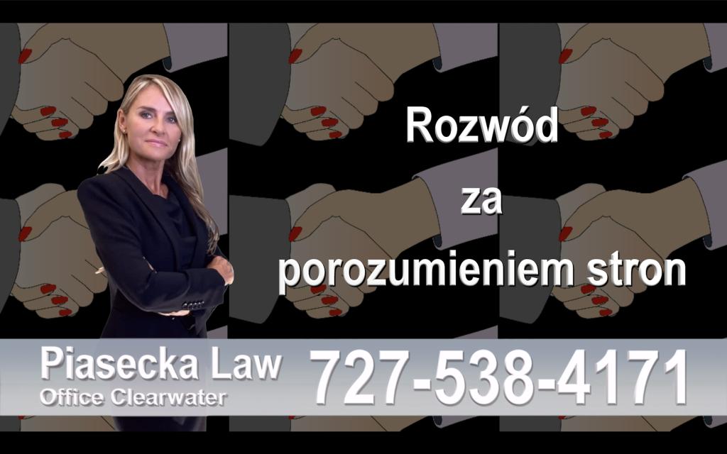 Divorce Lawyer Clearwater Florida Polski prawnik clearwater rozwód 14